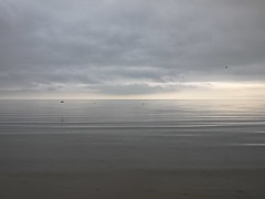 Murky morning, Ramsey, Isle of Man (paulitzerPix) Tags: ocean sea cloud seascape seaside ripple calm oystercatcher isleofman manx ramsey iom irishsea