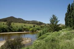 Murrumbidgee River, near Tharwa Bridge Canberra (Anna Calvert Photography) Tags: road wood sky nature grass river landscape scenery australia canberra 1895 tharwa murrumbidgeeriver