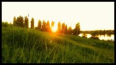 Grassy Sunset (VinnyM8) Tags: smartphonephotography lg g4 snapseed