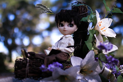 Feeling Lost (dreamdust2022) Tags: edgar allan poe sweet cute charming kind loving hug playful lonely sadness dreamy little young boy