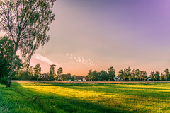 Evening in sunset (Monika ukauskyt) Tags: evening sunset germany grass sun plants trees houses redness red pink violet sky clouds lighting shine beautiful colourful