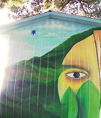 mirada de frente. (Felipe Smides) Tags: mural muralismo felipesmides smides valdivia niebla wallmapu mapuche naturaleza