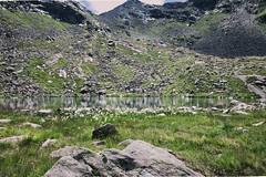LAGO D'ONORE (zozoros) Tags: lagodonore erensee plan pfelders alpi alps mountains montagna monti passiriental valpassiria