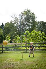 Seamus with the most gigantic sunflowers ever background (grilljam) Tags: summer august2016 pejepscotdayschool seamus 4yrs ball andgiganticsunflowers theyaremuchlargerinperson