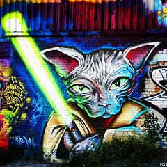 In a galaxy far far away where mighty Knights eat mice it isn't Monday yet. (Red Cathedral [FB theRealRedCathedral ]) Tags: instagramapp square squareformat iphoneography uploaded:by=instagram lofi jedi cat starwars graffiti alleedukaai brussels lightsaber bruxellesmabelle lalleedukaai sfinxcat streetart urbanart scifiart bruxelles brussel havenlaan