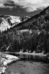 Taking in the Mountains and Snake River (Black & White) (thor_mark ) Tags: blackwhite blueskieswithclouds capturenx2edited colorefexpro drivefromjacksonwytosaltlakecity evergreentree evergreens greateryellowstonerockies lookingeast mountains mountainsindistance mountainsoffindistance nature nikond800e project365 river silverefexpro2 snakeriver snowylandscape transmissionline transmissionlinetowers transmissionlines transmissiontower trees ushwy89 jackson wyoming unitedstates