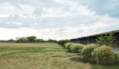 LibertyPark Open 1 (anjara531) Tags: libertystatepark trees sunset grassfield newjersey clouds anjara531