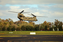 Chinook (Darren Schiller) Tags: aviation chinook helicopter army dubbo airport machine chopper aircraft