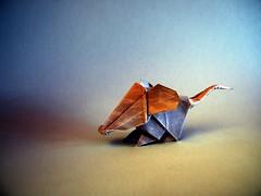 Ratn - Vicente Dolz (Rui.Roda) Tags: origami papiroflexia papierfalten souris rato camundongo mouse ratn vicente dolz