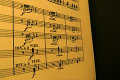 Acciaccatura (Alfredo Liverani) Tags: macro canong5x canon g5x musica music musik project 2562016