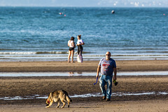 Beach People (ColinParte) Tags: 300mm bangor beach ballymaconnell alsatian