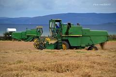 (Zak355) Tags: rothesay isleofbute bute scotland scottish farming farm johndeere combine
