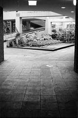 Kinderspielpltze im Betonwunderland / playground in concrete wonderland (n0core) Tags: beton betonwunderland wunderland concrete wonderland playground spielplatz kinderspielplatz analog bw canon dsseldorf 35mm 135 eingang entrance f1 film filmfilmforever grain gebude korn filmkorn lomography lomo orwo ostfilm panchromatic n74 n74plus platte sad urban einfahrt