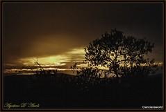 Ultimo tramonto dell'estate - 20-Settembre-2016 (agostinodascoli) Tags: sunset paesaggi landscape cianciana sicilia nikon nikkor nature texture alberi mandorlo piante agostinodascoli viaggi travel sole settembre estate