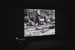 Ian Mistrorigo 016 (Cinemazero) Tags: pordenone silentfilmfestival cinemazero ianmistrorigo busterkeaton matine cinemamuto pianoforte
