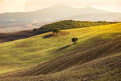IMG_1373 (Mok Wu) Tags: tuscany italy pienza