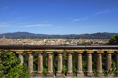 (ngiambr1) Tags: view piazzale michelangeo italy florence columns gate plants foliage leaves green vines