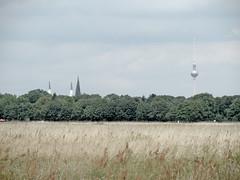 Trme (onnola) Tags: berlin deutschland germany tempelhof tempelhoferfeld tempelhoferfreiheit flughafentempelhof wiese meadow field turm tower steeple