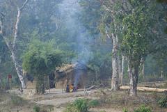 Rural Baiga house (wietsej) Tags: rural baiga house maikal hills bhoramdeo chhattisgarh india tribal sonydslra100 sonysal135f18 jungle morning fog fire wietse jongsma kawardha