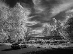 parting shot (** RCB **) Tags: infrared fordmustang sky hss sliderssunday car automobile trees clouds outdoor horizontal nb northerncalifornia sacramento 720nm bw monochrome