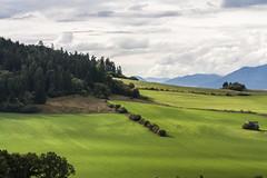 Valley - Janska Dolina (Miroslava Balazova LAZAROVA) Tags: forest nature landscape beauty slovakia janska dolina valley green trees mountain sky clouds