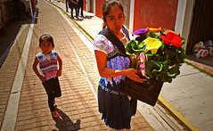 Vendedora de alcatraces (Harry Szpilmann) Tags: mexico streetphotography woman girl urban portrait flower alcatraz indian people cholula mexique