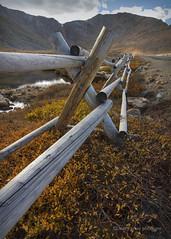 Autumn on the Tundra (maryanne.pfitz) Tags: landscape nature mountain tarn mtevans summitlake fence tundra autumn clouds water mapco8333 maryannepfitzinger