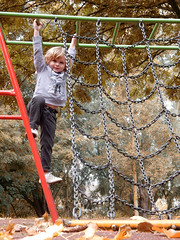Spring in Autumn (foggyray90) Tags: trees climbing frame climbingframe child boy autumn