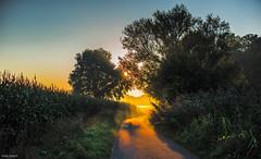 orange Flut (fredy_egdorf) Tags: sonne sonnenstrahlen orange licht nikon d750 pscc2015 luminanzmaske sdkirchen mnsterland landschaft