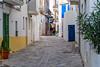 Ibiza (Edi Bähler) Tags: architektur bauwerk fassade gasse gebäude ibiza pflanze spanien architecture building facade plant structure nikond5 28300mmf3556
