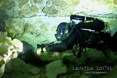 IMG_6915 (2) (SantaFeSandy) Tags: ballroom diving divers derek covington rebreather can cavern cave canon camera catfish sandrakosterphotography sandrakosterphotographycom sandykoster sandy sandra santafesandysandrakosterphotographycom sandrakoster swimmers scuba springs colors caves