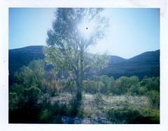 sunset, lower TAPCO (EllenJo) Tags: polaridweek october2016 polaroid instantfilm ellenjo ellenjoroberts clarkdaleaz arizona afternoon autumn sunset october16 2016 fujiinstant fujiinstantflm fujifp100c colorpack3 landcamera lowertapco