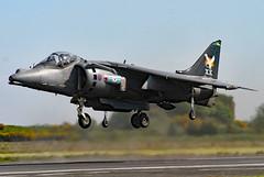 ZD407 (GH@BHD) Tags: zd407 britishaerospace bae harrier jumpjet raf royalairforce aircraft aviation fighter bomber strikeaircraft military newtownardsairfield newtownards