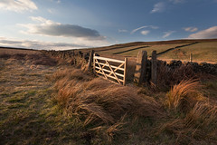 New Gate (Paul Newcombe) Tags: england field wall fence landscape photography countryside spring gate post derbyshire peakdistrict farming may farmland british grasses goldenhour cpl drystone goldenlight circularpolariser canon1740l whiteedge paulnewcombe nearcurbaredge
