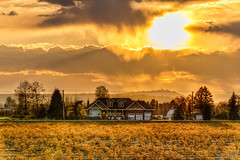 Distant House (`James Wheeler) Tags: light sunset summer sky orange cloud sun sunlight house plant canada nature beautiful field yellow rural sunrise season landscape gold dawn golden evening countryside colorful warm natural bright cloudy outdoor dusk britishcolumbia farm vibrant background country farming grow dry sunny nobody scene farmland growth crop agriculture majestic mapleridge hdr agricultural jerrysulinapark