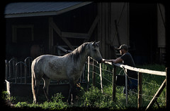 Ranch (lifemage) Tags: life ranch light horse canada animal barn rural fence photography bc farm feed rancher lifemage