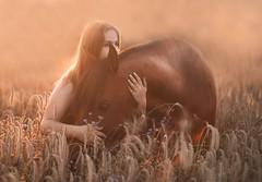 Zuzia & Ghazallah (Jagoda 1410) Tags: womenwhitahorse horsearabian stallion arabianstallion field outdoor friendship horsemanship togetherness equinephotography equine equistrian