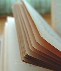 22. (lisapinciroli) Tags: book detail macro pages words