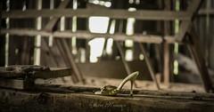 Fairlane Farm-28 (hiker083) Tags: abandoned farmhouse decay decrepit derelict cars vacant oncewashome