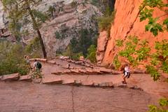 GEM_2959 (Gregg Montesi) Tags: zion national park angels landing