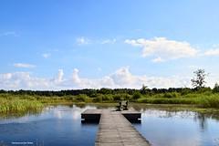 Beautiful place to take a break (Mariannevanderwesten) Tags: nikon nature natuur kortenhoef
