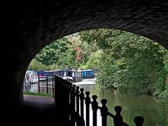 1330-50L (Lozarithm) Tags: bath sydneygardens canals kennetavon bridges paths pentax prime ks1 100f28 dfamacro100mmf28wr