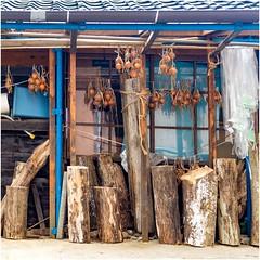 Inami  (Toby Howard) Tags: nantoshi toyamaken japan jp onions   brown blue hanging wood