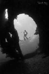 Wreck (Randi Ang) Tags: libertywreck wreckdive tulamben bali indonesia liberty shipwreck underwater scuba diving dive photography wide angle randi ang canon eos 6d fisheye 15mm randiang
