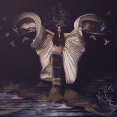 Janus ('_ellen_') Tags: janus gatekeeper beginnings time tradition butterfly wings woman god mermaid sea birds ellen mcdermott ireland