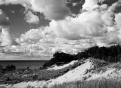 Perfect day in the dunes (pabs35) Tags: dune dunes lake lakemichigan clouds grandmerestatepark film believeinfilm blackandwhite bw mediumformat 120 ilford fp4 fp4plus ilfordfp4plus sky mamiya m645 1000s mamiyam6451000s
