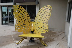 giant_butterfly_5Div0147 (cold_penguin1952) Tags: benches art austin texas