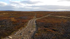 Crossroads, fall time. My huge playground:-) No ques at all:-) (GeirB,) Tags: varanger vads vadsoe vadso finnmark arctic 70north norway nordnorge noruega northnorway outdoor landscape sykkeltur terrengsykling path training trail fjellvei autumn fall hst vakkert lyng rtb turningpoint endless eternity