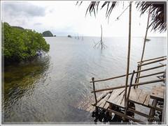 DSCN0205 (Ove Cervin) Tags: 2016 aw130 anda bohol coolpix filippinerna flickr lamanokcaves nikon philippines travel public