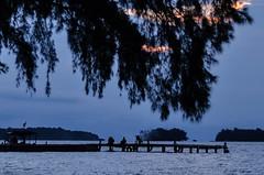 The Harbour (Vicky Ming Alditiara) Tags: nikon d7000 nikond7000 landscape pulau island kepulauan seribu pulauperak perak pantai laut pasir pelabuhan harbour swiming sky langit biru harmony kapal ship privateisland private